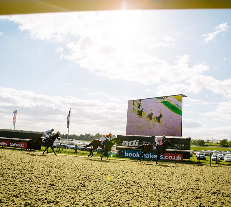 Horses running past the large screen on a beautiful sunny day at Lingfield Park Racecourse.