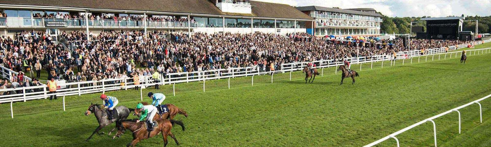 Jockeys racing past the crowds at Lingfield Park Resort.