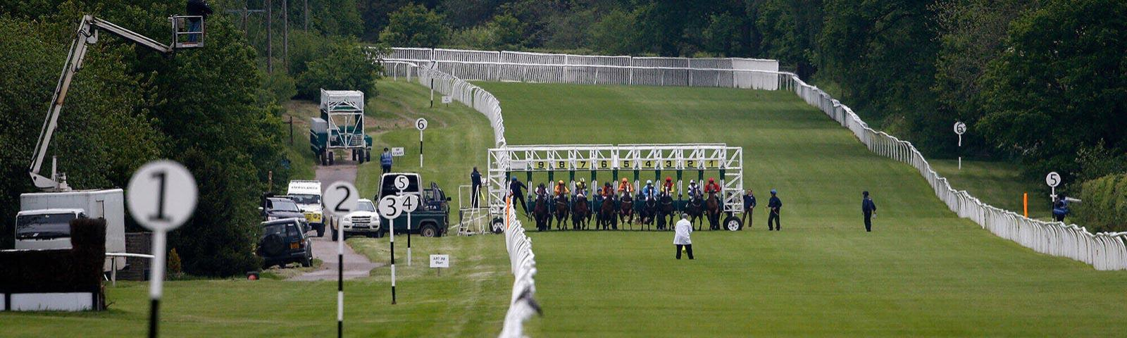 A still image captures the moment the field of horses are released from the starting gate.