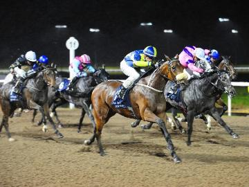 All-Weather Championships at Kempton Park