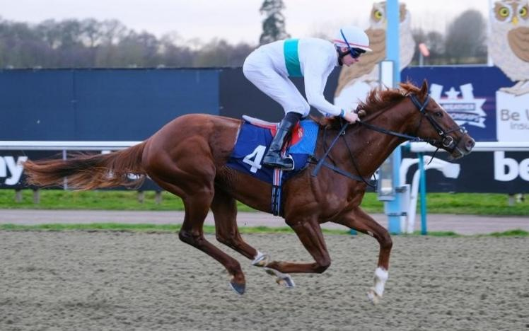 wissahickon at lingfield park